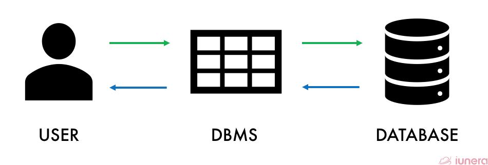 How a DBMS works?