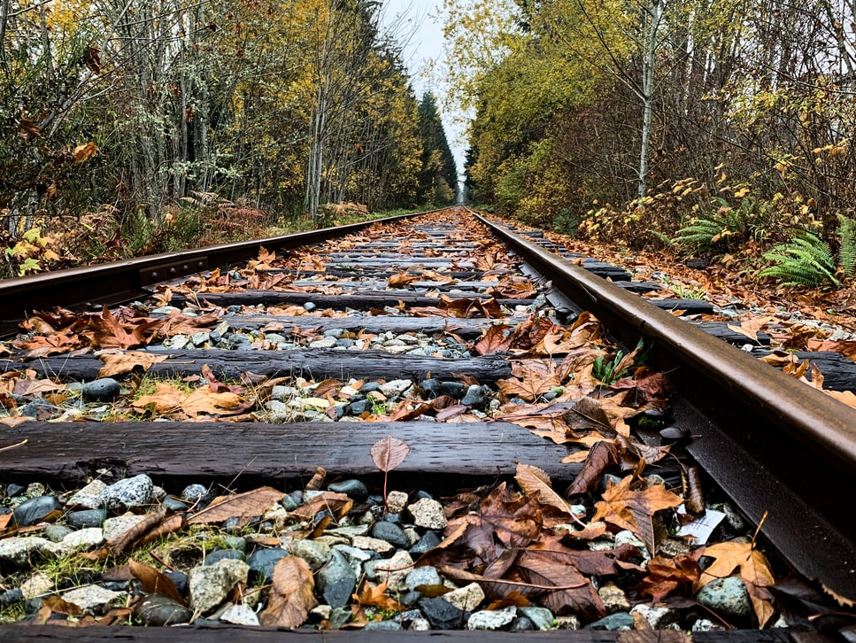 Autumn leaves on a train track.